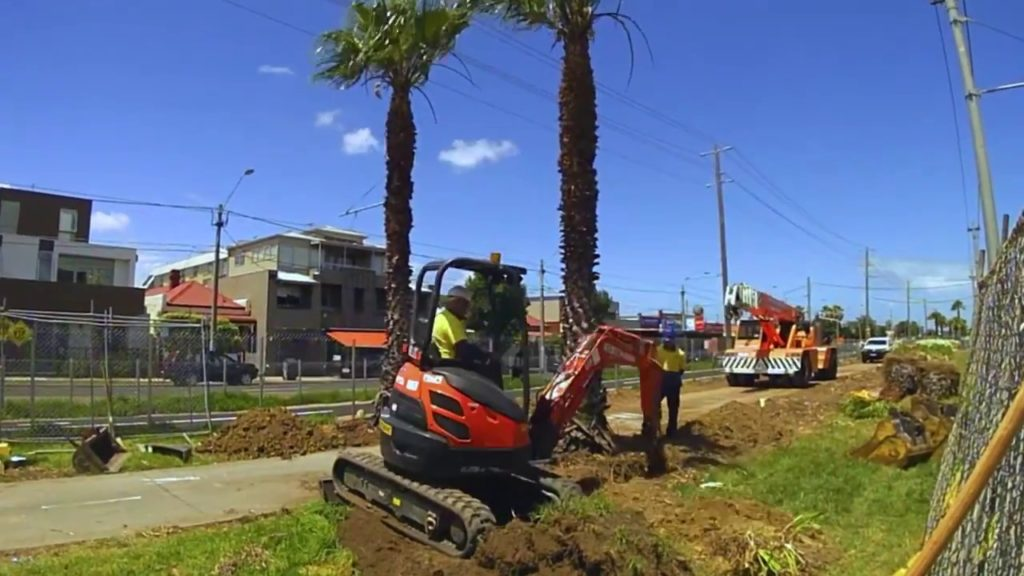 Palm Tree Removal-Miami-Dade County FL Tree Trimming and Stump Grinding Services-We Offer Tree Trimming Services, Tree Removal, Tree Pruning, Tree Cutting, Residential and Commercial Tree Trimming Services, Storm Damage, Emergency Tree Removal, Land Clearing, Tree Companies, Tree Care Service, Stump Grinding, and we're the Best Tree Trimming Company Near You Guaranteed!